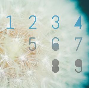 numerology bonnie gillespie