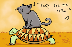they see me rollin cat turtle chari pere