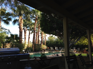 Pool from Café 2013