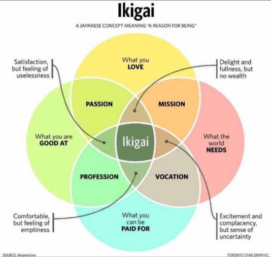 ikigai with gaps filled in