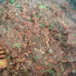 zucchini lasagna simmering sauce