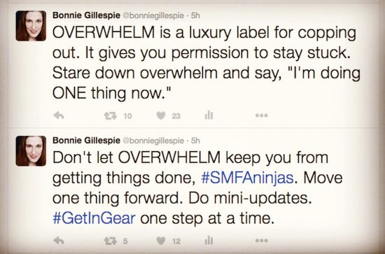 overwhelm tweets bonnie gillespie