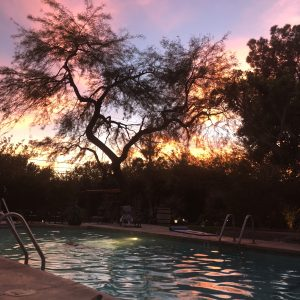 Hacienda Hot Springs No Filter by Bonnie Gillespie