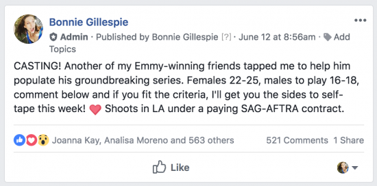 casting favor at fb group bonnie gillespie