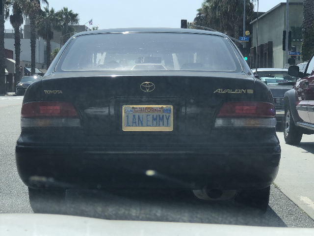 1anemmy license plate