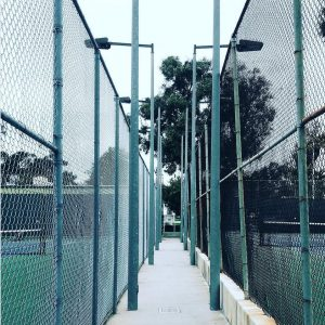 perspective reed park tennis courts