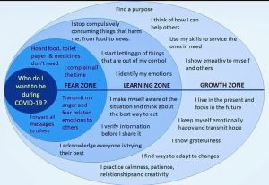 Bonnie Gillespie 3 Zones Fear Learning Growth by Mary Kokinda
