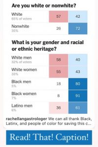 rachel lang astrologer we can thank non-whites for saving our democracy